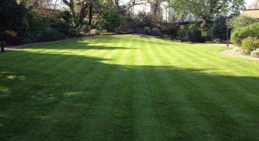 Residential Garden Services